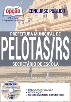 Concurso Prefeitura de Pelotas 2017-SECRETÁRIO DE ESCOLA-AGENTE DE COMBATE ÀS ENDEMIAS