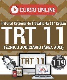 Curso On-Line TÉCNICO JUDICIÁRIO – ÁREA ADMINISTRATIVA (Vídeoaula) - Concurso TRT 11ª Região 2017