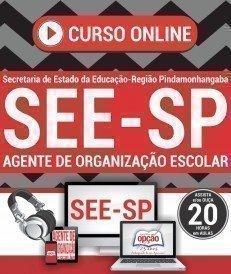 Curso On-Line AGENTE DE ORGANIZAÇÃO ESCOLAR - Processo Seletivo SEE SP Pindamonhangaba 2017