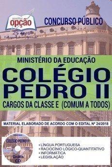 CARGOS DA CLASSE E (COMUM A TODOS)