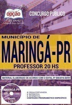 PROFESSOR 20 HS