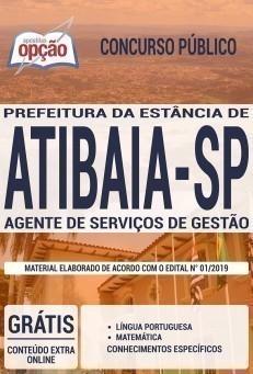 AGENTE DE SERVIÇOS DE GESTÃO