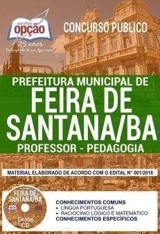 PROFESSOR - PEDAGOGIA