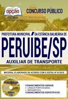 AUXILIAR DE TRANSPORTE