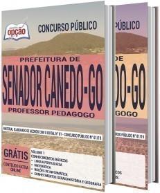 PROFESSOR PEDAGOGO