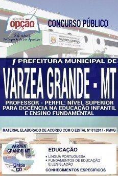 PROFESSOR - NÍVEL SUPERIOR P/ DOC. NA EDUCAÇÃO INFANTIL E ENSINO FUNDAMENTAL