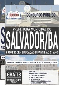 PROFESSOR EDUCAÇÃO INFANTIL AO 5ºANO