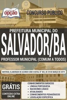 PROFESSOR MUNICIPAL (CONTEÚDO COMUM A TODOS OS CARGOS)