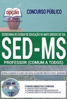 PROFESSOR - COMUM A TODOS OS CARGOS