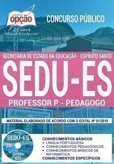PROFESSOR P - PEDAGOGO