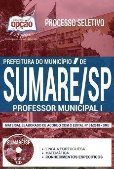 PROFESSOR MUNICIPAL I