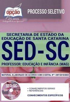 PROFESSOR - EDUCAÇÃO E INFÂNCIA (MAG)