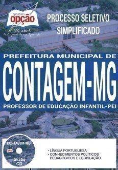 PROFESSOR DE EDUCAÇÃO INFANTIL - PEI